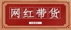 网红带货:薇娅、李佳琦、辛巴'网红带货'三巨头